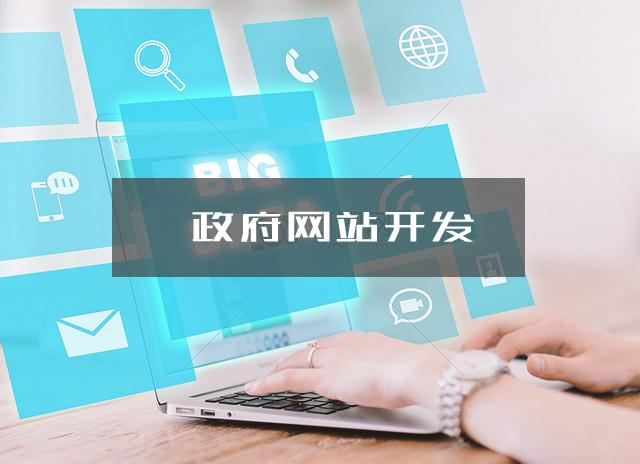 政府网站开发