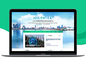 論壇峰會網站設計/網站建設