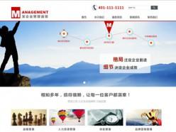 企业管理咨询模板