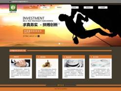 金融投資模板