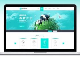 原创作品:企业网站设计