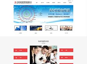 大知企業管理咨詢網站建設