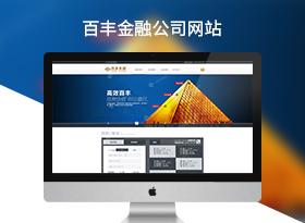 百丰金融服务集团公司网站建设