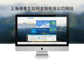 通善互聯網金融信息服務公司網站建設