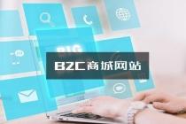 连云港网站制作B2C商城网站的两种常见模式